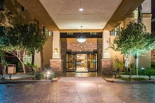 Get Promos Staybridge Suites Phoenix-Glendale