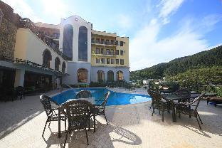 Borjomi Palace Spa Hotel & Resort photo 4