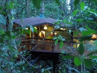 树屋山林小屋