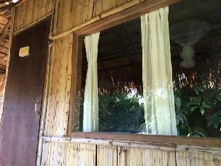 パイ ビンテージ ガーデン リゾート Pai Vintage Garden Resort