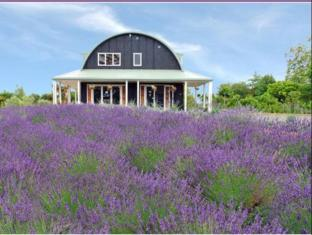 Lavender Hill Luxury Bed and Breakfast