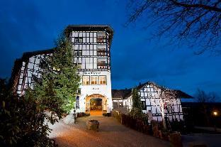 Promos Dorint Resort Winterberg Sauerland