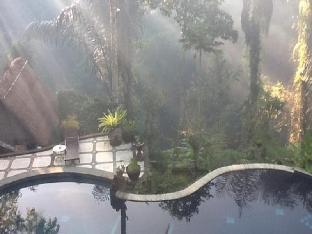Jalan Manukaya, Tampak Siring, Ubud