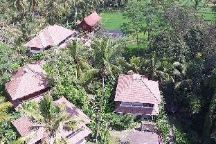 Kenderan Street, Banjar Kepitu, Kenderan Village Tegalalang