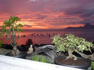 Balcon du Lotus Apartment - Tahiti