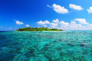 Asia Inn Villa Retreat PayPal Hotel Maldives Islands