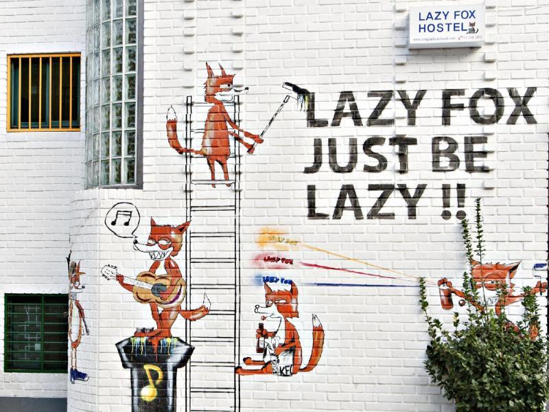 ホンデ レイジー フォックス(Hongdae Lazy Fox Hostel In Seoul)