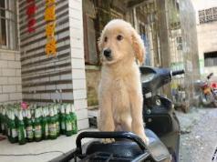Beer Friends Hostel, Guilin
