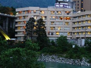 Hotel Togen Асахи