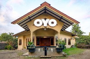 25, Pohruboh 25C RT.02 RT.52, Joho, Condongcatur, Yogyakarta