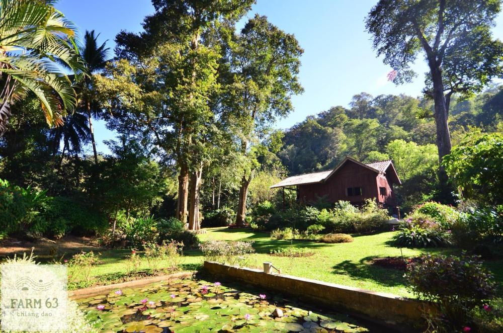 Farm63 Chiang Dao Riverfront Home