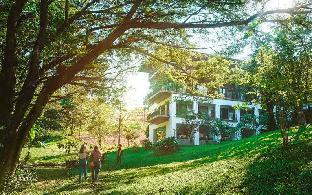 レインツリー レジデンス Raintree Residence