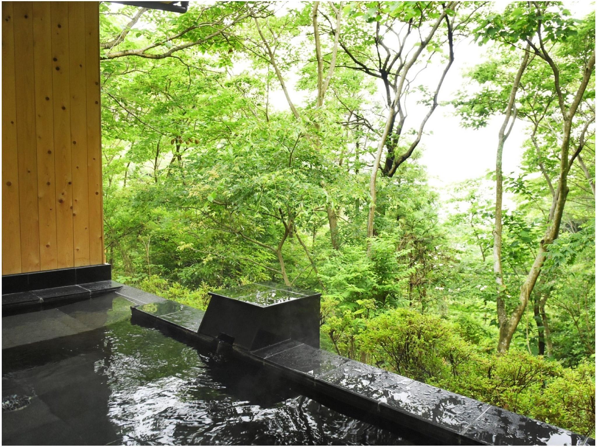 Mori No Onsen Hotel