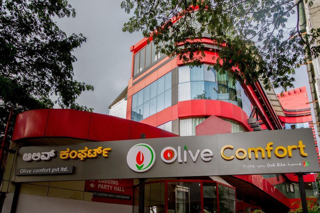 Olive Comfort