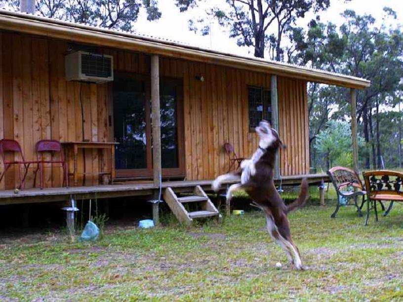 Discount Lovedale Cottages