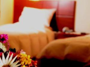 โอเตเลส กาซา เรอัล (Hoteles Casa Real)
