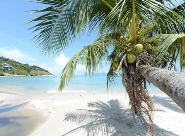 LUXURY BEACH VILLA 250 METRES FROM BEACH 3 BEDROOM Koh Samui