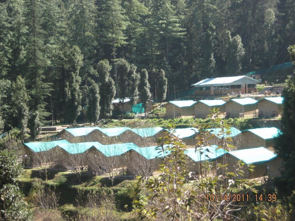 Mashobra Greens Shimla