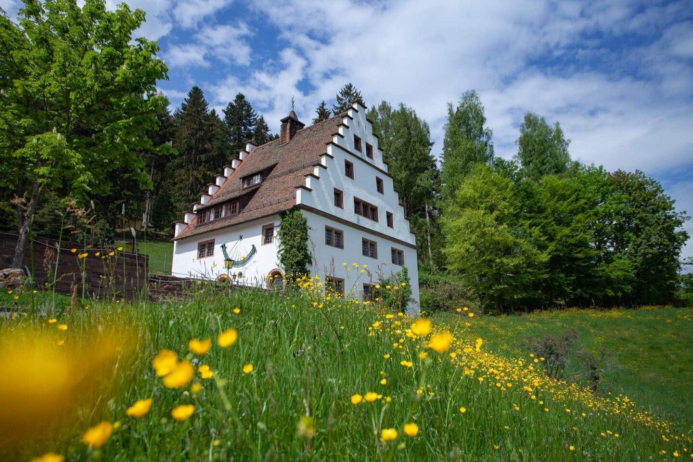 Manorial Mansion Hofgut Barenschlossle 2