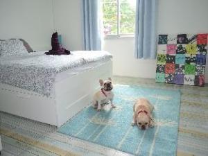 Homebar guesthouse