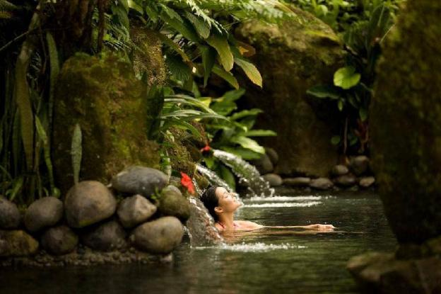 1BR Pate Private pool/Bfast @Ubud