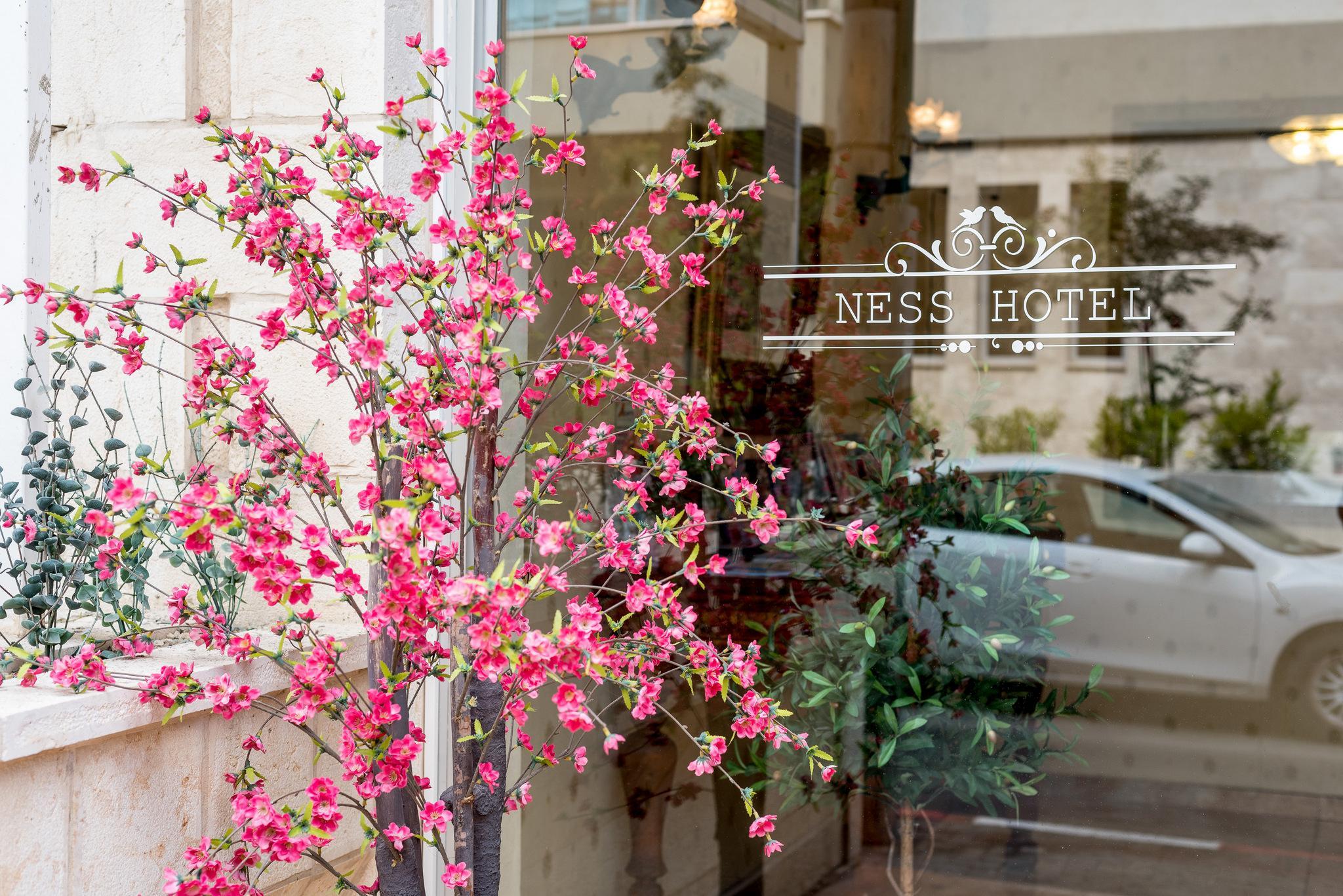 Ness Hotel Tel Aviv