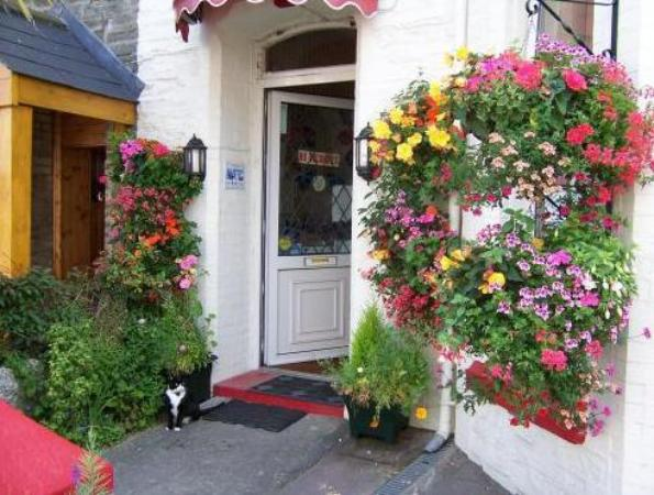 Sea Bed Guesthouse Newquay