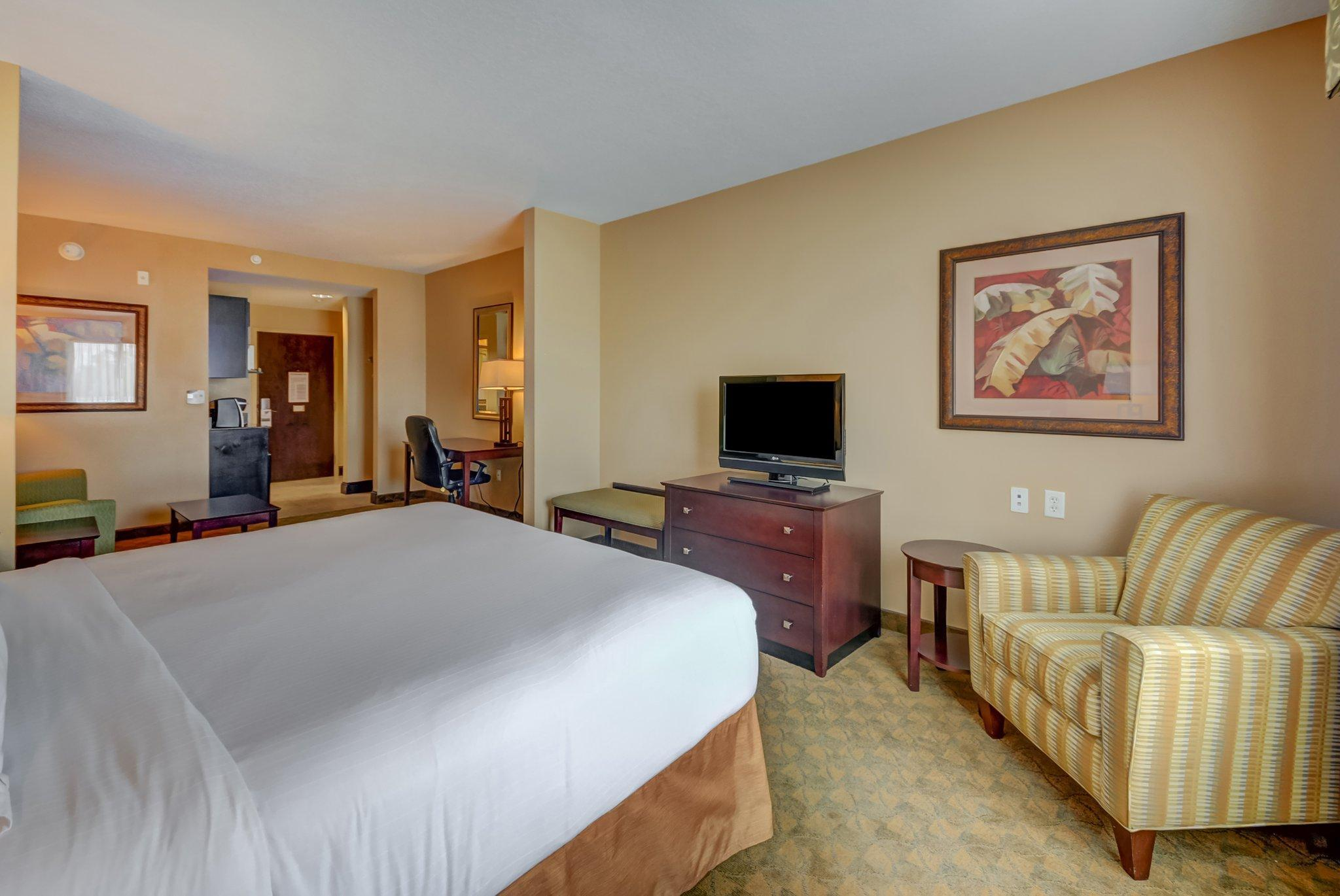 Holiday Inn Express Hotel & Suites Tampa USF Busch Gardens