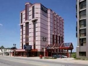 關於塔維洛奇瀑布酒店 (Travelodge Hotel by the Falls)