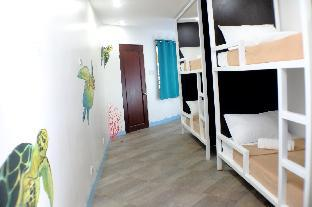 picture 2 of 1521 Hostel