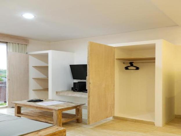 Green Studio Apartment