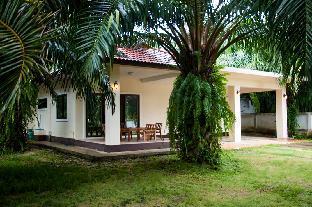 Palm House Palm House