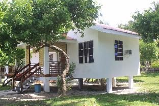 picture 1 of Yama Beachfront House