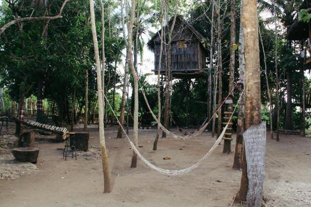Nyuh Bengkok Tree House