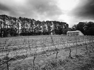 Mantons Creek Estate & Lodge