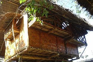 picture 4 of Amazing Gecko Bamboo Room