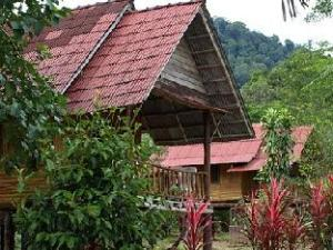 Khaosok Palmview Resort