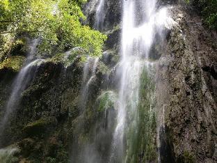 picture 4 of Eden Resort