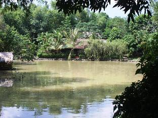 Vịt Cổ Xanh Spa Ecolodge