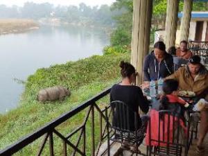關於叢林野生動物營飯店 (Jungle Wildlife Camp)