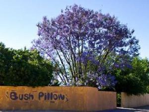 Bush Pillow Guest House