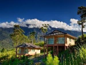 Dream World Resort