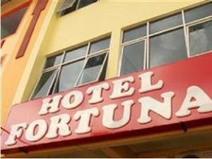 關於幸運飯店 (Hotel Fortuna)