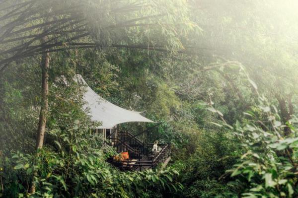 Four Seasons Tented Camp Golden Triangle Chiang Saen