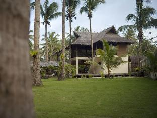 picture 3 of Buddha's Surf Resort