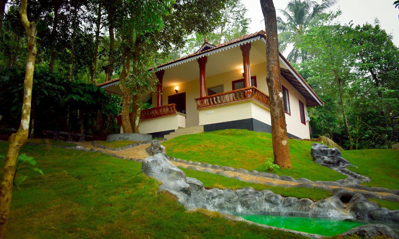 Green Garden Daisy Villa