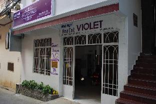 Hoa Cat Violet
