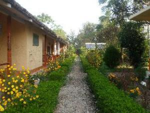 Apie Forest Hideaway Hotel & Cottages (Forest Hideaway Hotel & Cottages)