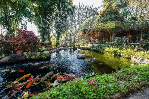 Phu Chaisai Mountain Resort Chiang Rai