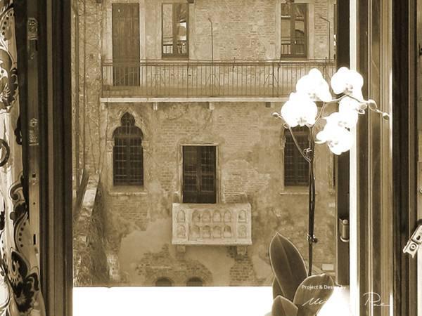 Le Suite Di Giulietta